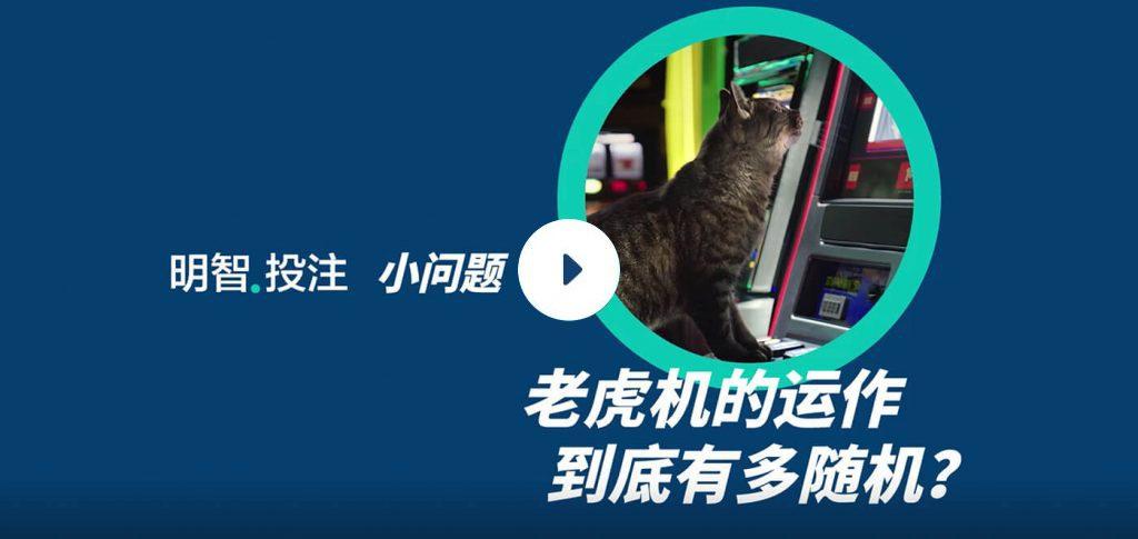 """什麽是""""随机""""?了解老虎机如何随机地运作──一只猫坐在老虎机前"""
