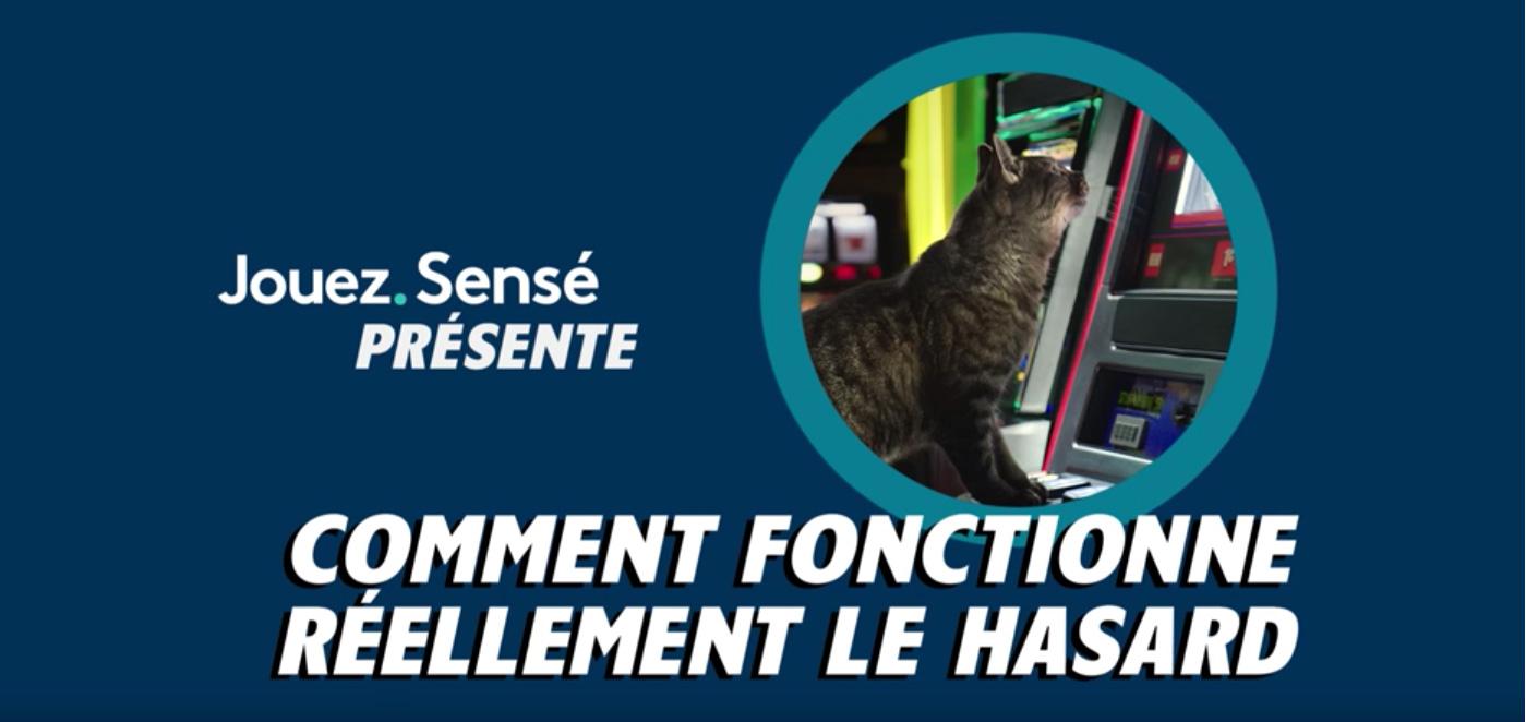 Comment fonctionne réellement le hasard? – chat assis à une machine à sous.