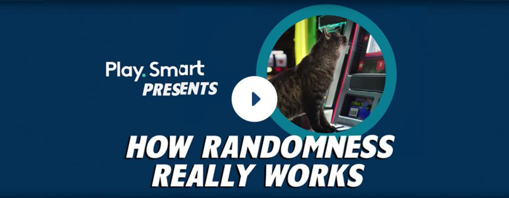 How randomness really works - cat sitting at slot machine