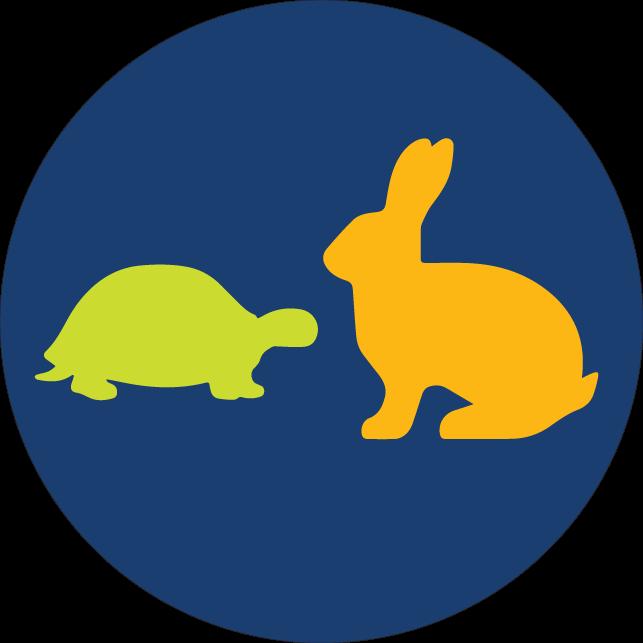 乌龟与兔子