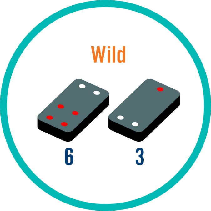 "Two tiles with values adding up to 9, is labelled ""Wild""."